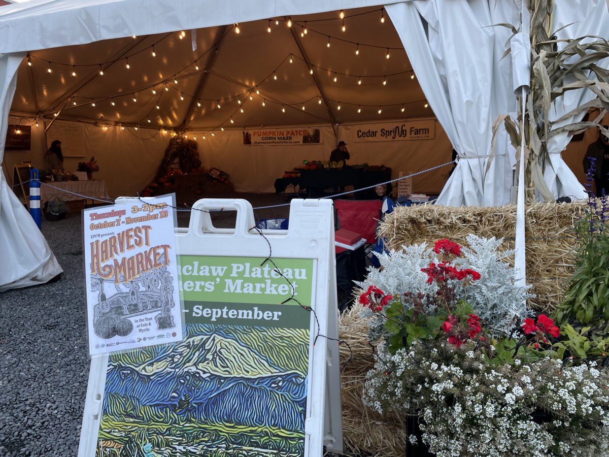 Harvest Market Week 2 Vendor List